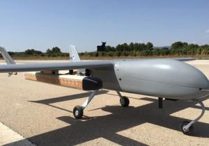 tse-tse fly drone